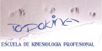 TodoKine - Escuela de Kinesiología profesional